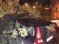 Гроза в Москве уничтожила автомобили граждан