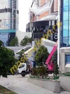 Розовый гусь в центре Москвы
